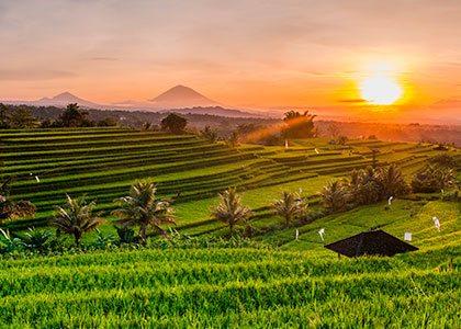 Klassisk landskab på Bali