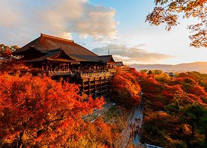 Rejser til Kyoto i Japan