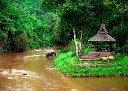 Rejser til det nordlige Thailand